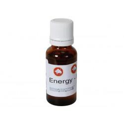 Parfum Energy pour liquide fumigène 20ml