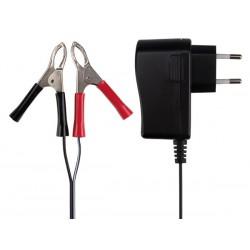 Chargeur auto batterie acide plomb 6v et 12v