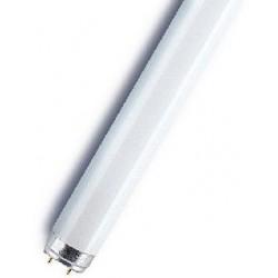 Tube néon 18W T8/G13